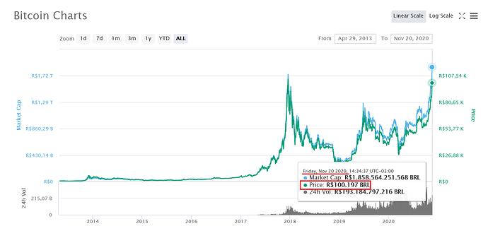 Coinmktcap 20 11 2020 100k Graf