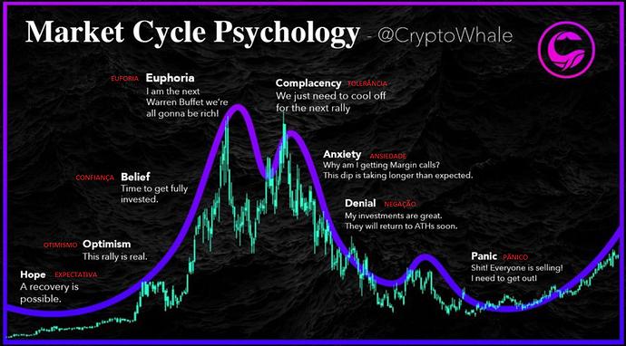 Ciclo Psicológido do Mercado numa Bolha