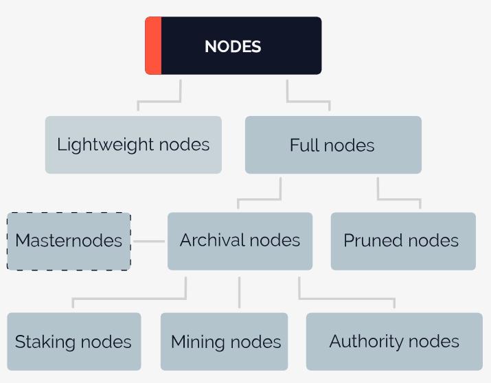 tipos de nodes